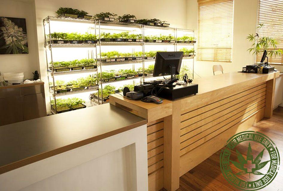 Securing Medical Marijuana Dispensaries