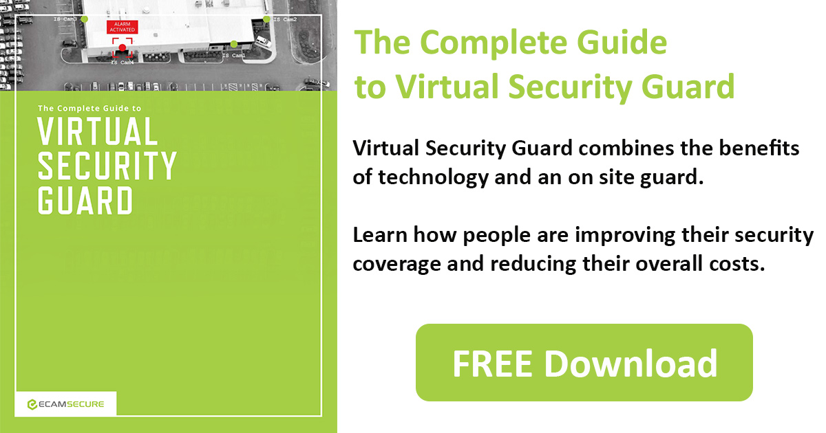 The Complete Guide to Virtual Security Guard Download