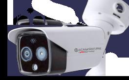 virtual temperature screening camera